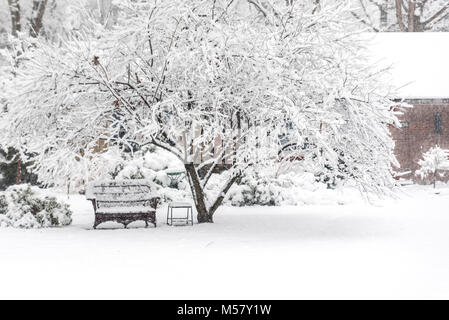 Outdoor furniture and tree covered with snow in front yard of house - Stock Photo