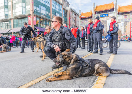 Police officer with police dog, Chinese Lunar New Year Parade, Chinatown, Vancouver, British Columbia, Canada. - Stock Photo
