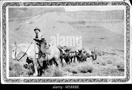 a Grand Canyon Historic Kaibab Trail Mule Packer. PACKER LEADING A MULE SUPPLY TRAIN ON THE SOUTH KAIBAB TRAIL ON - Stock Photo