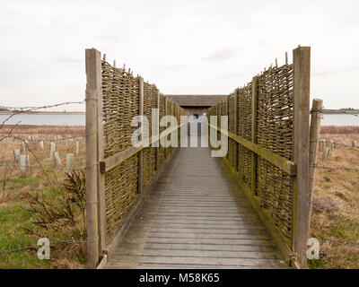 open wooden plank walkway bird hide nature reserve; essex; england; uk - Stock Photo