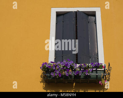 Window on Yellow home in Venice Italy - Stock Photo