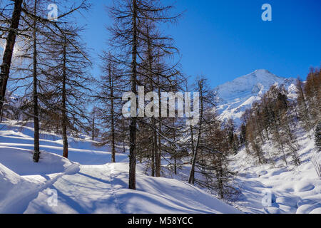 Winter landscape in the Val d'Herens, Valais, Swiss - Stock Photo