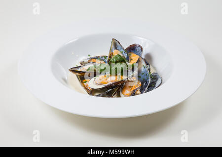 Mussels in a Creamy Sauce in a white bowl on a white background isolated - Stock Photo
