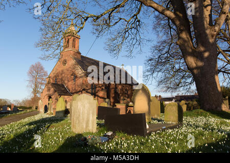 Village of Coddington, England. Picturesque late winter view of snowdrops in front of St Mary's Church, in the Cheshire - Stock Photo