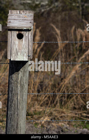 Bird House on a Crooked Fence Post - Stock Photo