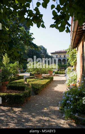 Giardino Corsini al Prato, Florence, Tuscany, Italy: view of the palace across the box hedging, lemon trees and - Stock Photo