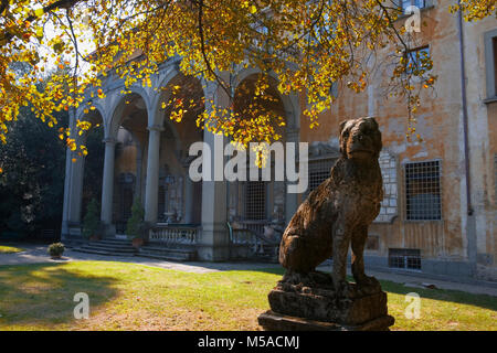 Giardino Corsini al Prato, Florence, Tuscany, Italy: view of the palace, with a quirky statue of a dog in the foreground - Stock Photo