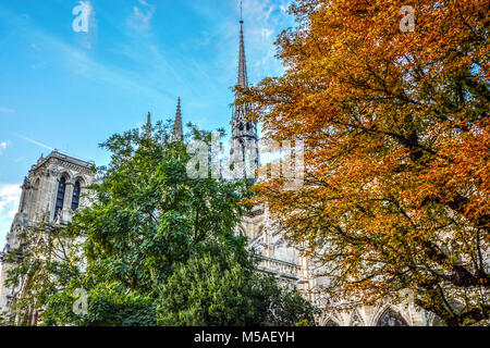 The Notre Dame cathedral with the apostles of Saint Luke climbing the gothic spire on a sunny autumn day in Paris - Stock Photo