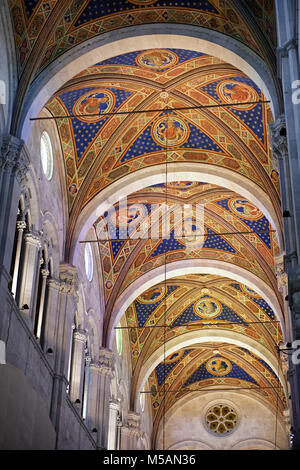 Painted vaulted ceiling of the Cattedrale di San Martino,  Duomo of Lucca, Tunscany, Italy, - Stock Photo