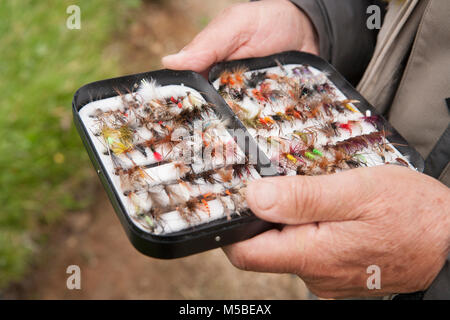 A fly fisher choosing a fly from his fly box for stocked put and take rainbow trout on a reservoir. England UK GB - Stock Photo