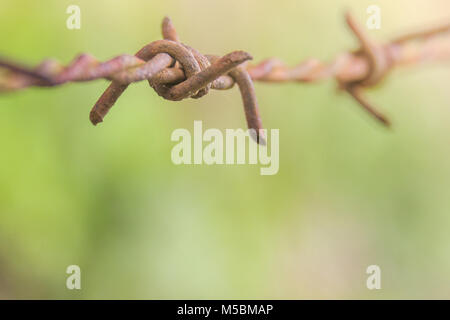 Detail of a rusty barbed wire fence on blurred nature background - Stock Photo