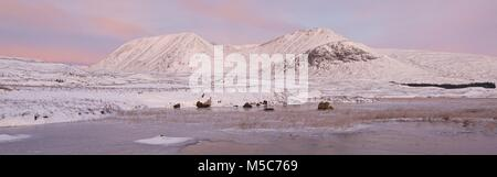 A colour panorama image of Rannoch Moor. This was taken on a winters morning looking to the Black Mount range from - Stock Photo