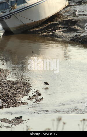 Wat Tyler Country Park Essex - Landscape and Light down at the Creek - Stock Photo