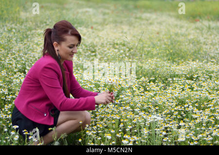 the young girl is picking daisies while taking photos outdoors in the field of chamomile. - Stock Photo
