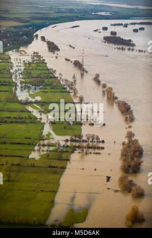 Flood on Rhine, near Duisburg, Ruhr Area, North Rhine-Westphalia, Germany - Stock Photo