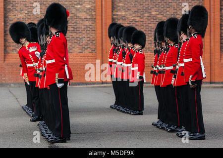 Windsor, UK. 21st February, 2018. An officer inspects the 1st Battalion Coldstream Guards, chosen to Troop its Colour - Stock Photo