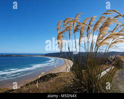 Coast of New Zealand - Stock Photo