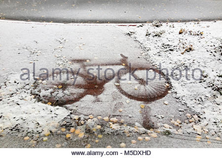 Fresh, early snow leaves an imprint of a bicycle on a brick sidewalk covered with fallen aspen leaves. - Stock Photo