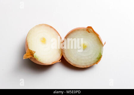 Remedial plant, dryly, plant parts, remedial plants, onion, vegetables - Stock Photo