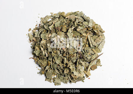 Remedial plant, dryly, plant parts, remedial plants, herb, herbs, tea, tea herbs, women's coat - Stock Photo
