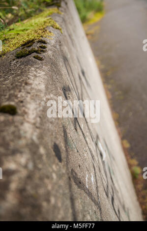 Closeup sideview of a rough concrete wall. Showing man vs nature. - Stock Photo