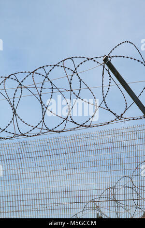 Barbed wire fence on Robben Island, former prison, Cape Town, South Africa - Stock Photo