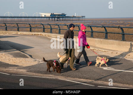 Southport, Merseyside. 24th February, 2018.  UK Weather. Chilly wind and blue skies at the coast as local residents - Stock Photo