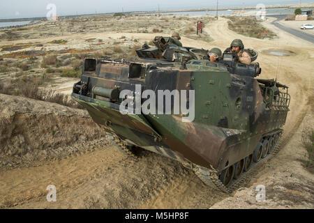 U.S. Marines with Assault Amphibian School Battalion drive Amphibious Assault Vehicles though a licensing course - Stock Photo