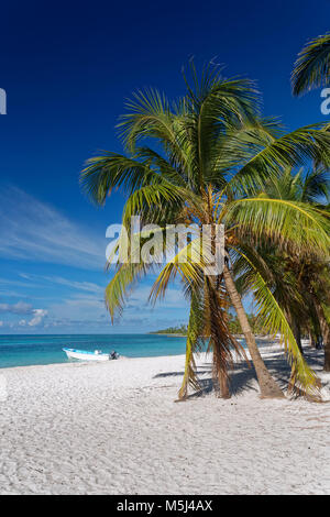 Carribean, Dominican Republic, beach on the Caribbean Island Isla Saona - Stock Photo