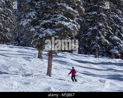 Skier skis The Star trail, winter, Blue Sky Basin, Vail Ski Resort, Vail, Colorado. - Stock Photo