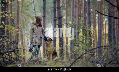 Young pretty female model playing with her pet - german shepherd - walking on a autumn forest - girl throws the - Stock Photo