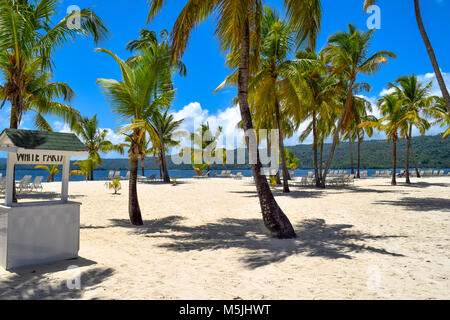 White beach with many palms, a lot of sunbeds, blue sky and turquoise ocean in the caribbean sea, Dominican Republic - Stock Photo