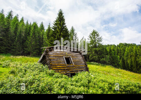 Isolated and abandoned mountain cabin in the woods / Dolomites / Italy/green/trees/ - Stock Photo