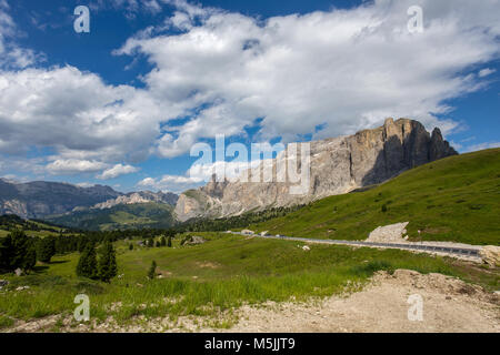 The Sella group near the Passo Sella in Val Gardena with flowering meadows and mountain hiking trails/ Dolomites/ - Stock Photo