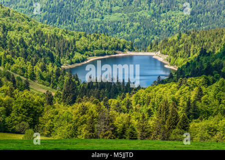 French lake (Le lac de la lande) - an idyllic lake surrounded by green forest in french Alsace on Route of Crete, - Stock Photo