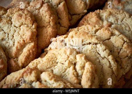 Two rows of freshly cooked plain American cookie biscuits laid out to cool. - Stock Photo