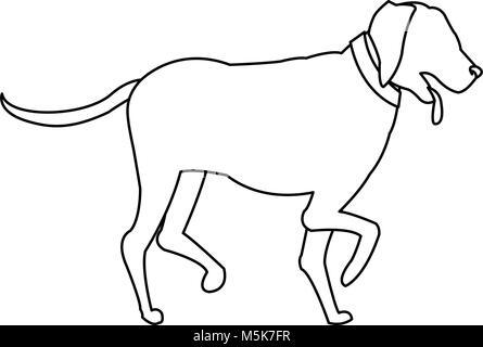 Dog pet cartoon - Stock Photo