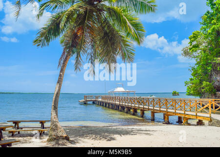 Sandy beach with a big palm and small bridge in caribbean Sea, Dominican Republic - Stock Photo