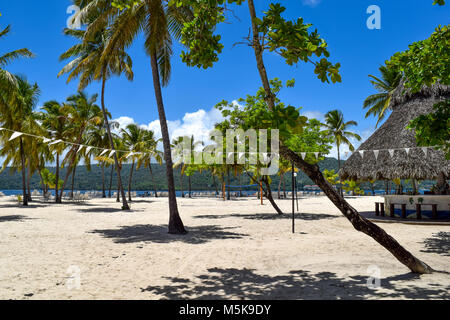 White beach with sunbeds, many palms, blue sky and a beach bar in the caribbean sea, Dominican Republic - Stock Photo