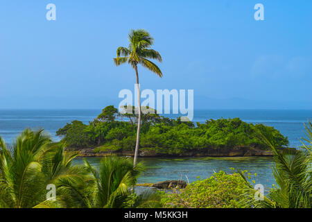 View over palms to a little no named tropical island, one big palm in front of the isle, blue sky, Dominican Republic - Stock Photo