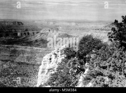 Grand Canyon Crazy Jug Point . VIEW OF CANYON WEST FROM CRAZY JUG POINT ON THE NORTH RIM. CIRCA 1910. - Stock Photo