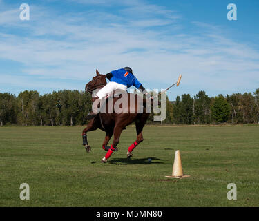 Amateur Polo Players in Tournament Play at the Black Diamond Polo Club, September 3rd  and 4th, 2011 - Stock Photo