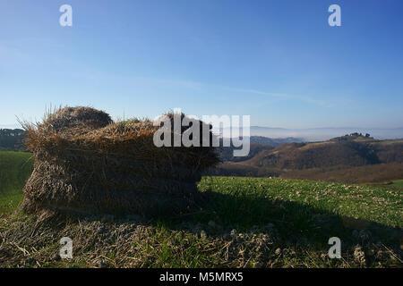 Tuscan hills, near San Giovanni d'Asso, Crete senesi, Italy - Stock Photo