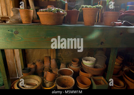 Interior of garden shed with terracotta plant pots and plants - Stock Photo