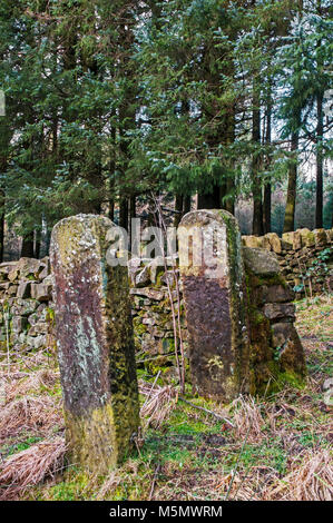 Old Stone wall and Stone gate pillars - Stock Photo