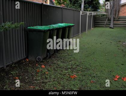 Green bins in yard. Organics bins with wheels. Garden organics bin for garden waste like shrubs, flowers, weeds, - Stock Photo