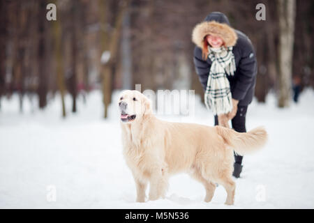 Picture of woman on walk with labrador in snowy park - Stock Photo