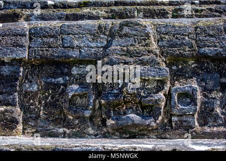 The Belize Altun Ha Mayan Ruins - Stock Photo