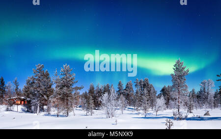 Amazing Aurora Borealis northern lights over beautiful winter wonderland scenery with trees and snow on a scenic - Stock Photo