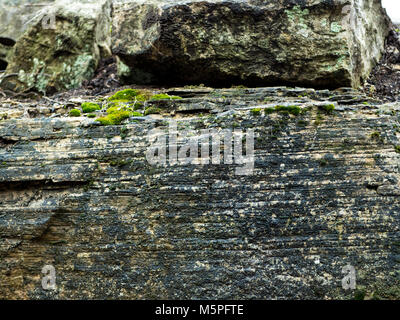 Rock Formation with Moss found out in the Wilderness. It's bright green color satisfies even the most color skeptics - Stock Photo